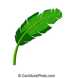 Tropical palm leaf. Colorful cartoon vector Illustration...