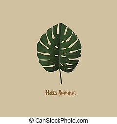 tropical palm monstera leaf hello summer