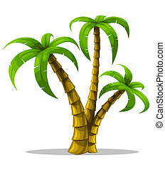 tropical palm trees isolated on white