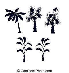 Tropical palm trees silhouette set