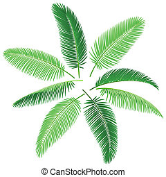 Tropical palm trees - Vector illustration of palm leaves. ...