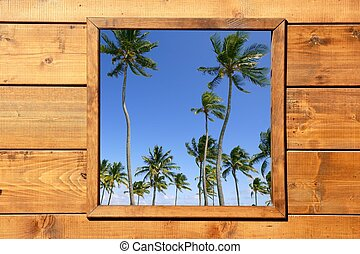 Tropical palm trees view from wooden window