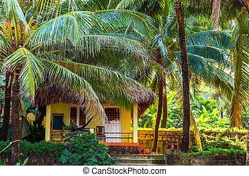 tropical, palma, resort., turista