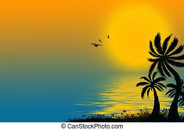 tropical, palmas