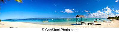 tropical, panorama, playa de arena