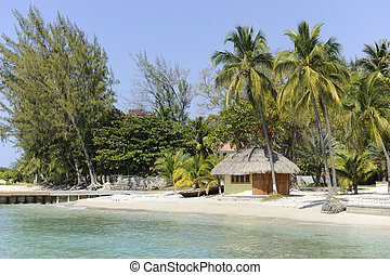 A small, pristine thatched hut on the Carribian Sea surrounded by palms and other trees.