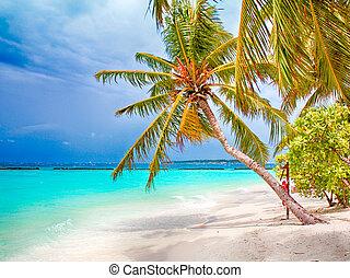 Tropical paradise Maldives