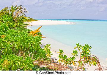 Tropical paradise of Maldives