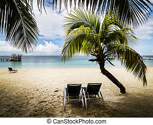 Tropical paradise on the island of Roatan, Honduras