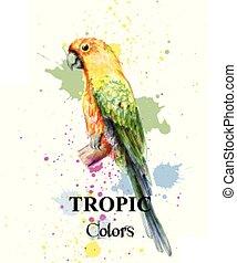 Tropical paradise parrot bird watercolor Vector. Paint splash colorful backgrounds