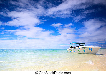 Tropical paradise. White sand beach, turquoise ocean and...