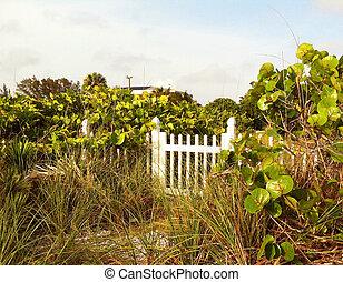 Tropical Path Gate