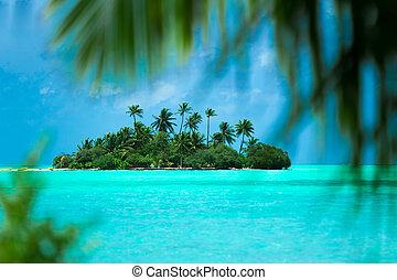 tropical, perfecto, isla del paraíso