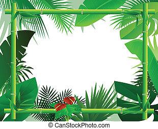 tropical, plano de fondo, con, bambú, fra