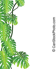 Tropical plant background - Vector illustration of tropical...