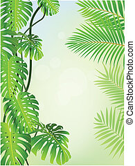 Tropical plant background