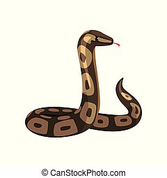 Tropical python pythonidae with tongue out. Large non-venomous dark-colored royal snake. Wild serpent. Exotic pet. Wildlife concept. Cartoon flat vector design