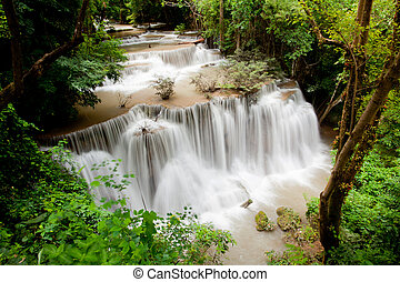 Tropical Rain forest waterfall