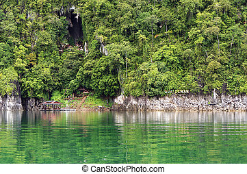Tropical rainforest at Kenyir Lake in Terengganu, Malaysia,...