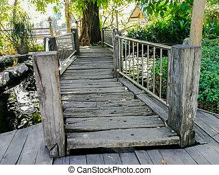 Tropical Rainforest, Forest, Hiking, Woodland, Thailand