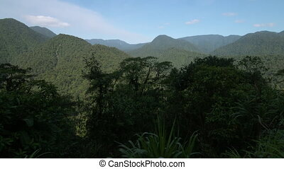 Tropical Rainforest Landscape View, Costa Rica - Wide low-...