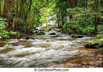 Tropical rainforest landscape with flowing river, rocks and...