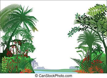 tropical, rainforest, selva