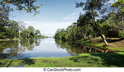 rainforest - tropical rainforest with lake, wildlife and...
