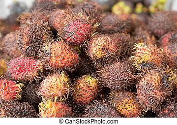 Tropical Rambutan Fruit