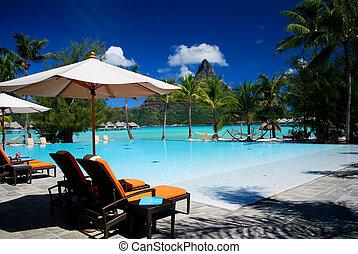 tropical, recurso, piscina, natación