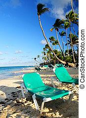 tropical, recurso, playa, arenoso