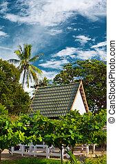 tropical, recurso