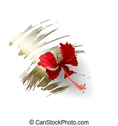 Tropical red hibiscus flower on white background