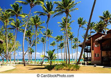 Tropical resort - Luxury hotel at tropical resort on ocean ...