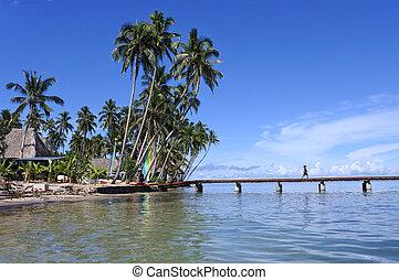 Tropical resort on Vanua Levu Island Fiji