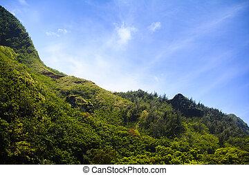 Tropical ridgeline of the mountains of Kauau