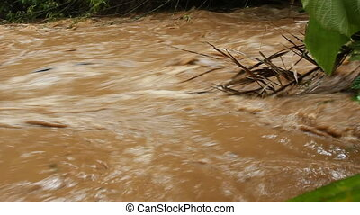 Tropical river in flood