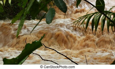 Tropical river in flood - Mud and water pouring down a ...