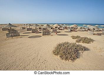 Tropical sandy beach at a hotel resort