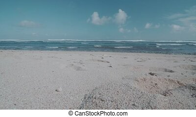 Tropical sandy beach - View from beautiful tropical sandy...
