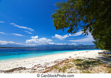 tropical sea and blue sky with white clouds