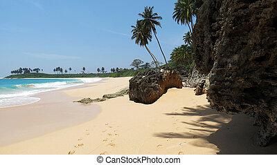 Tropical sea beach, Andamans