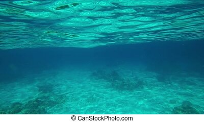 Clear waters of a Thai tropical sea, with gentle waves washing periodically over the camera and revealing the world beneath.