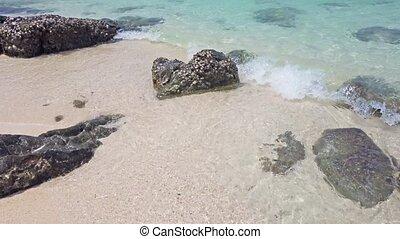 Tropical sea landscape with beach - Tropical sea landscape...