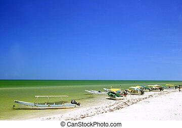 Tropical Shore - Tropical seashoreat Celestun with small ...