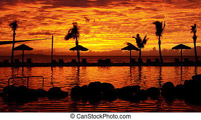 Tropical silhouette