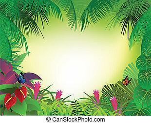 tropical skog, bakgrund