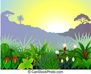 tropical skog