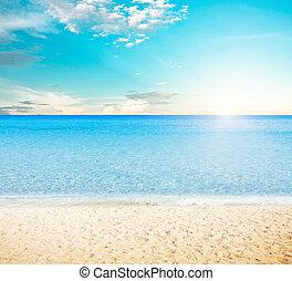 tropical, sol, encima, playa