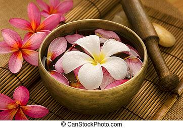 Tropical spa retreat - Tropical spa with Frangipani flowers...